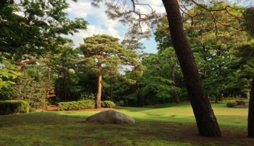 【国分寺】殿ヶ谷戸庭園でフォトウオーク