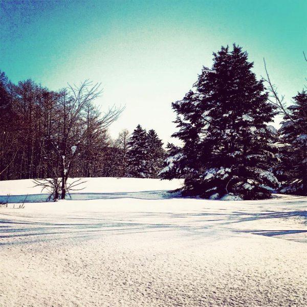 北海道 冬
