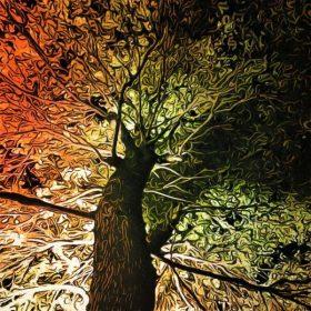 木の真下はアートの世界 in 広州