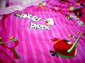大連開発区の布屋さんで「Angry Birds」の布発見!