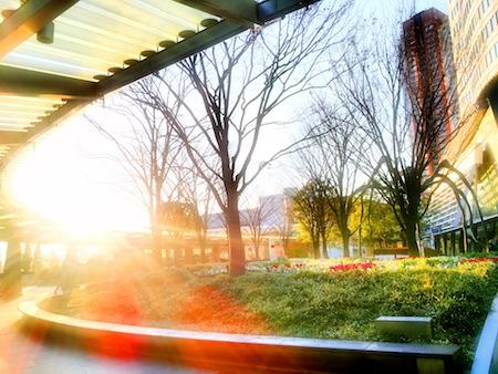 Beautiful Sunrise time