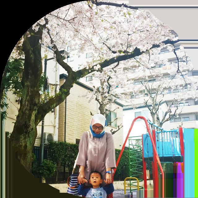 jalan-jalan ke jepang lihat sakura