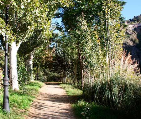 Senda ecologica en Toledo