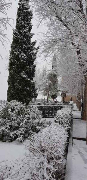 Paseo Virgen de Gracia Toledo Nevado