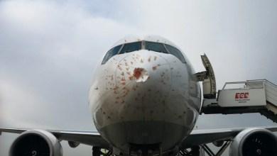 Photo of THY'in kargo uçağı kalkışta kuş sürüsüne girdi
