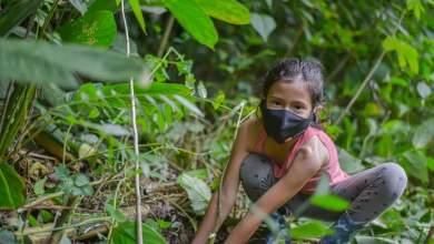 Photo of Se educarán estudiantes de colegios de Ibagué en el cuidado del medio ambiente
