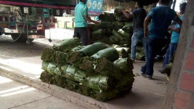 Photo of Con el apoyo de la ADR se construirá centro de acopio para las hojas de cachaco en Coyaima