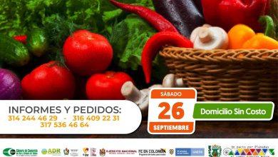 Photo of En Planadas se realizará el séptimo Mercado Campesino Virtual del departamento