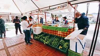 Photo of Campesinos venderán sus productos este fin de semana en el Parque Murillo y en el barrio Ibagué 2000