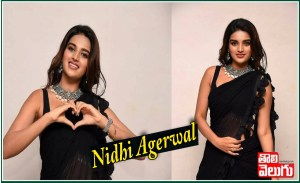 Nidhi Agerwal Latest Saree Traditional Photos