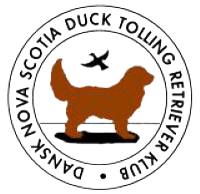 Nova Scotia Duck Tolling Retriever Klub
