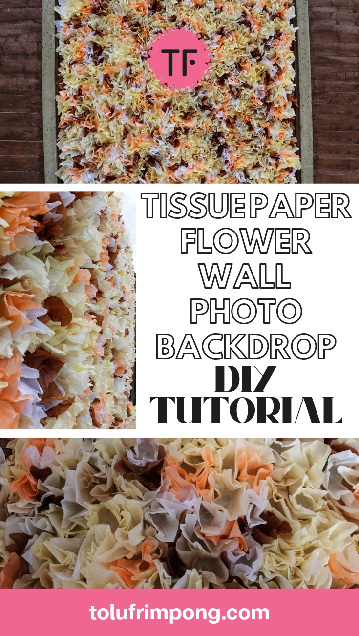 Simple DIY Tutorial - Tissue Paper Flower Wall Photo Backdrop