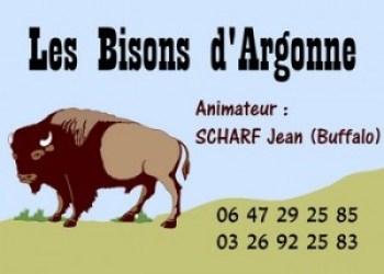 Les Bisons d'Argonne