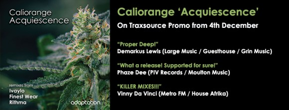 NEW RELEASE – Caliorange 'Acquiescence'