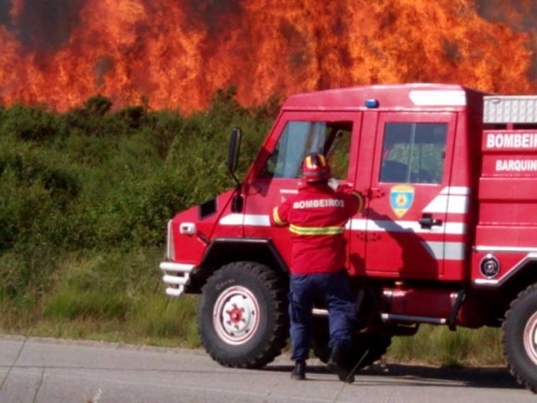 incendio 1556157253868166128 n