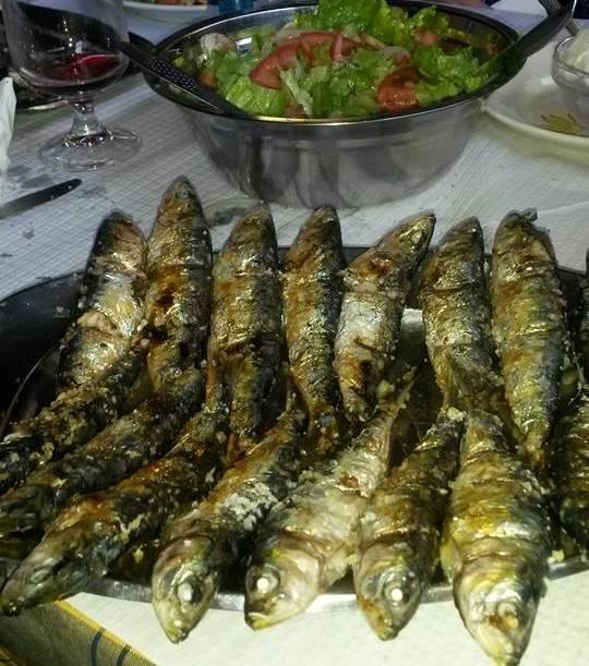 sardinha1353237278844495407 n