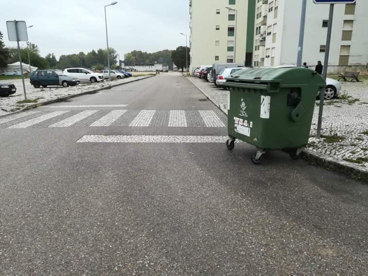 flecheiro lixo IMG 20191030 111337