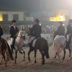 feira cavalo golega 0 2294224375353704448 o