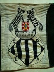 zebras do alvito 4013920401717762958_n