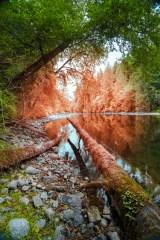 Marble River Revelation
