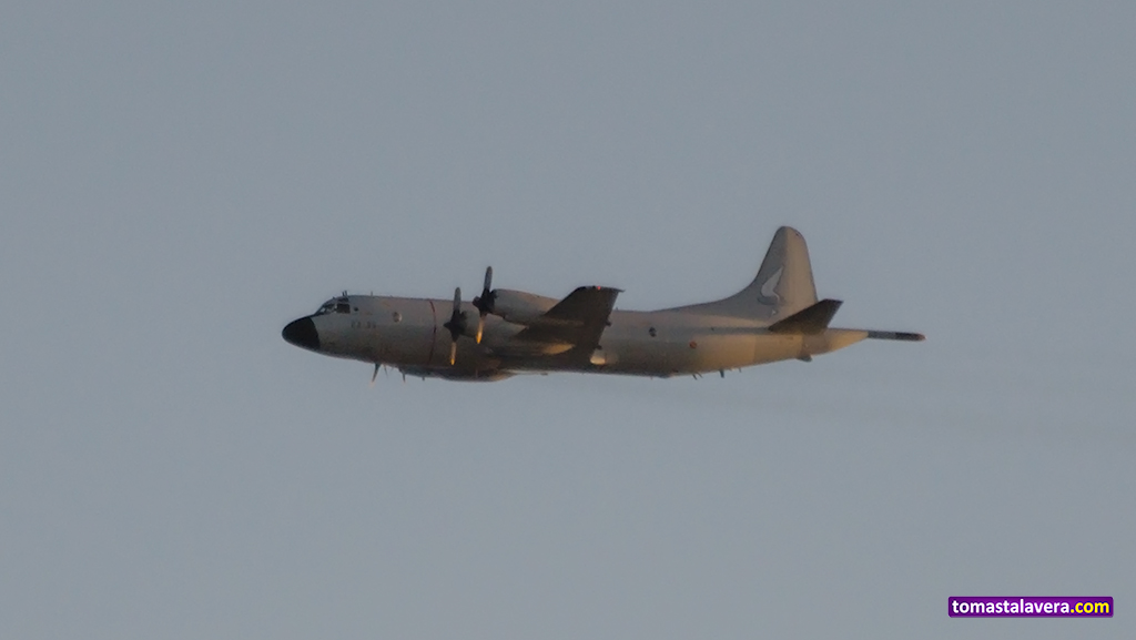 lockheed-P-3-orion-ejercito-aire