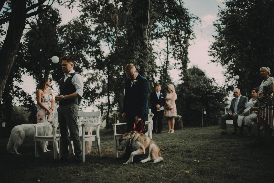 ranczo w dolinie ceremonia ślubna zaślubiny państwo młodzi