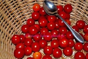 Mexikanische Zuckertomate Cherry rot