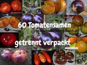 60 Tomatensamen 12 vers. Sorten Mischung getrennt verpackt Bund