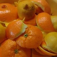 Orangenmarmelade halb und halb...
