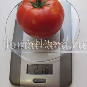 Томат Суперприз: отзывы, фото, урожайность, описание и ...
