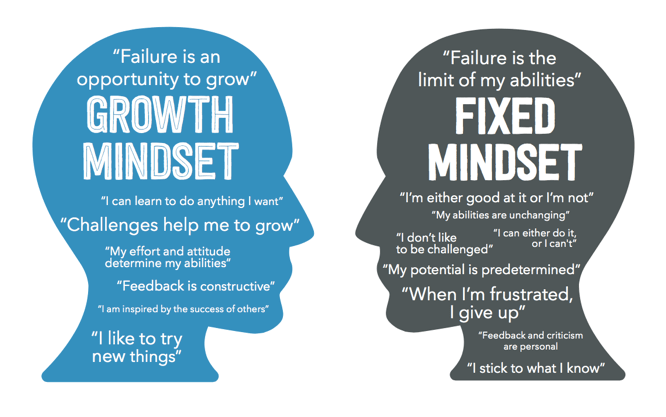 mindset diagram