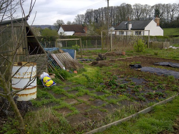 The allotment before we started