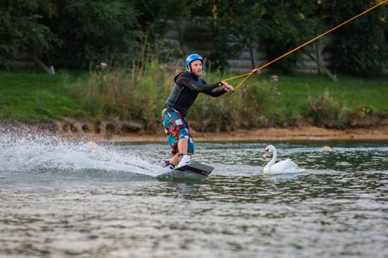 Wakeboarding round a swan