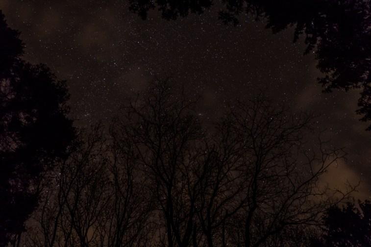 haind-woods-stars-redo-1