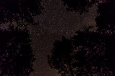 haind-woods-stars-redo-4