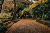 161214-imperial-gardens-4