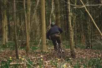 20170312-biking-11