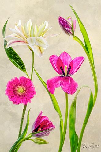 Sonata Lily Tulips Gerbera Daisy Small Web