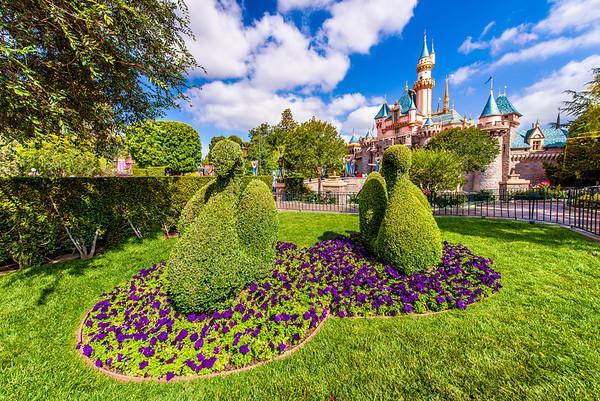 Disneyland Swan Topiaries & Sleeping Beauty Castle.