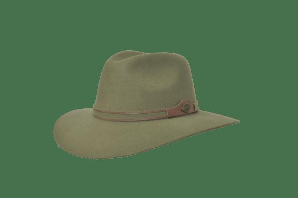Texana explorer olivo