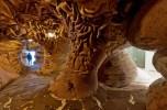 Ursulinenus Prolapse Interior
