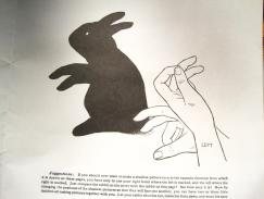 Shadow puppet rabbit