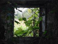 barn-window
