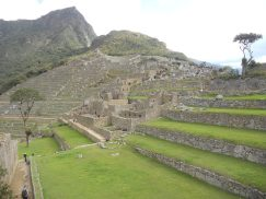 peru-not-all-the-terraces-and-stairs-at-machu-picchu-are-steep-there-are-some-gentle-shallow-terraces-and-although-in-places-it-is-very-steep-and-the-whole-place-is-positioned-on-a-ridge-line-betw