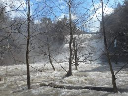 Ithaca Falls today 4-04-15