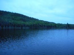 Adirondacks- Pharaoh Lake- Mtn. area which passes by many beautiful ponds, lakes, wetland marshes and streams...these photos were from Sunday night. 5-24-15