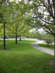 Cornell path 5-19-14