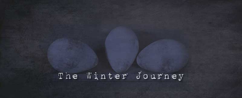 The Winter Journey - Terra Nova Expedition