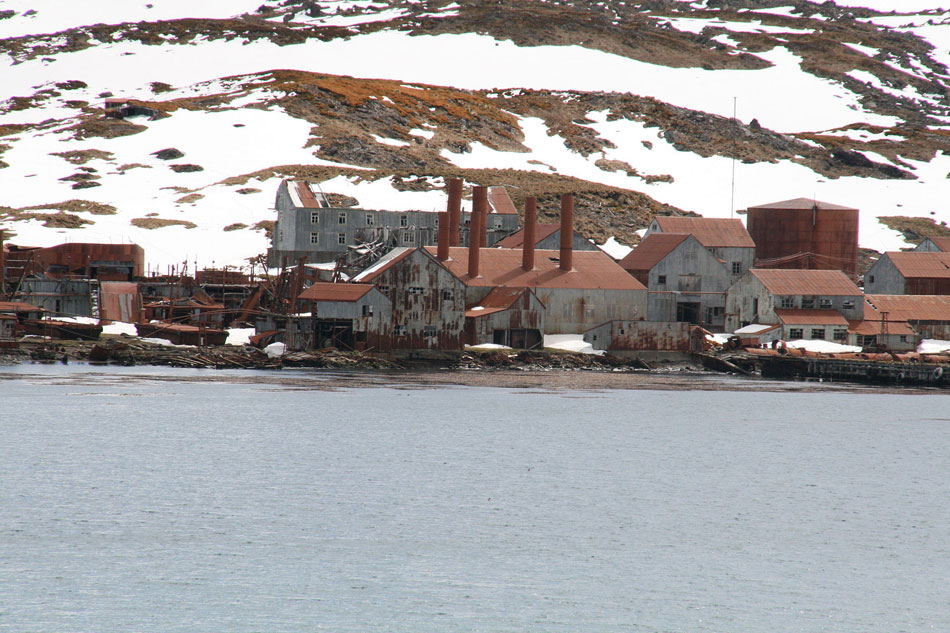 Leith Whaling Station, South Georgia.