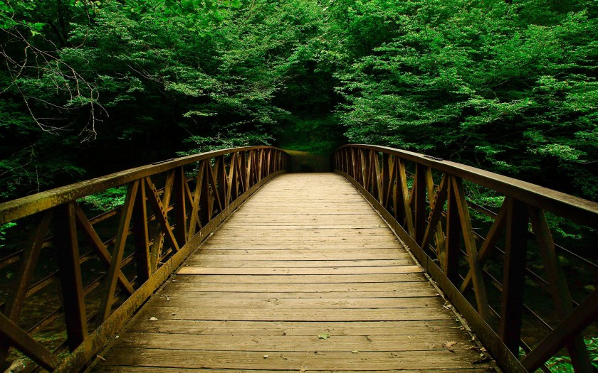 Jesus leads us across a bridge, joining our Father's overarching will with our daily experience of his grace.